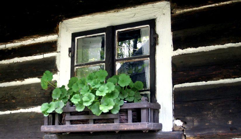 Sielanka o domu – Wolna Grupa Bukowina (WGB)