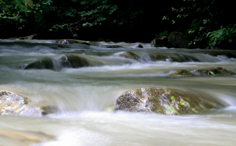 Rzeka – Wolna Grupa Bukowina (WGB)